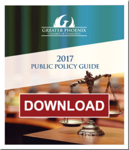 Public policy guide 2017 copy