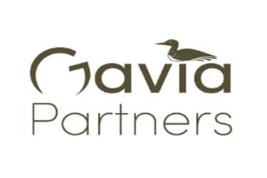 Gavia Partners 375X250